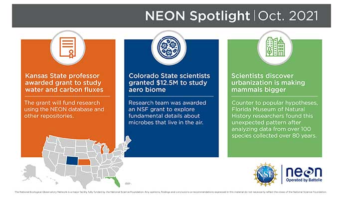 Photo: NEON infographic for neon at battelle
