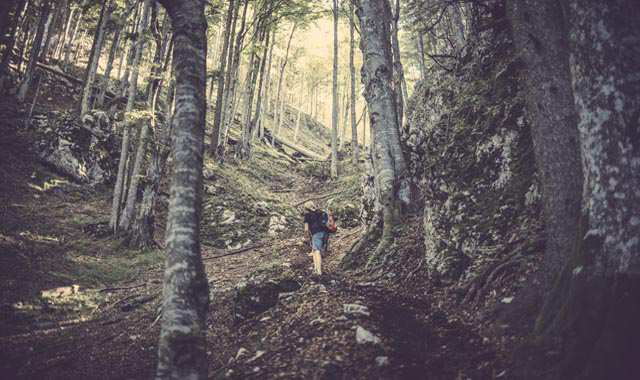woman hiking through the woods