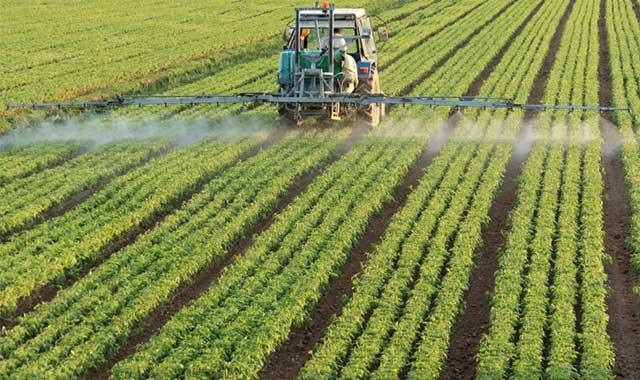Photo: farmer spraying crops