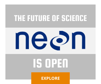 Explore Neon